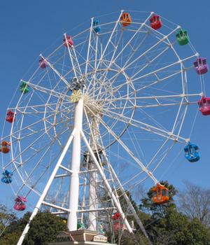 乗り物で遊ぶ | 見て、触れて、体験できる「おもちゃのテーマパーク」東条湖おもちゃ王国